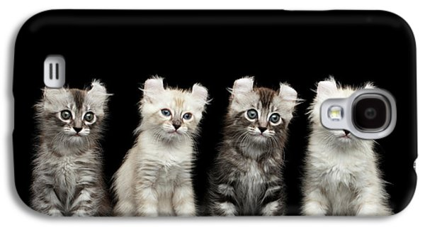 Cat Galaxy S4 Case - Four American Curl Kittens With Twisted Ears Isolated Black Background by Sergey Taran