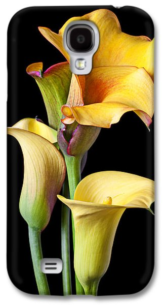 Four Calla Lilies Galaxy S4 Case by Garry Gay