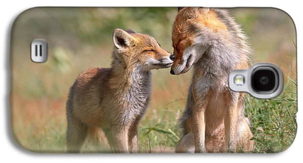 Fox Felicity II - Mother And Fox Kit Showing Love And Affection Galaxy S4 Case by Roeselien Raimond