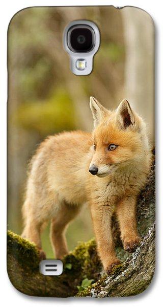 Fox Kit In A Tree Galaxy S4 Case by Roeselien Raimond