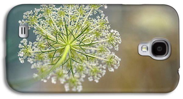 Fragile Dill Umbels On Summer Meadow Galaxy S4 Case by Nailia Schwarz