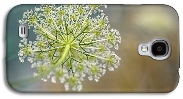 Fragile Dill Umbels On Summer Meadow Galaxy S4 Case