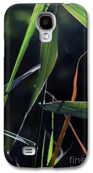 Galaxy S4 Case featuring the photograph Fragment by Linda Lees