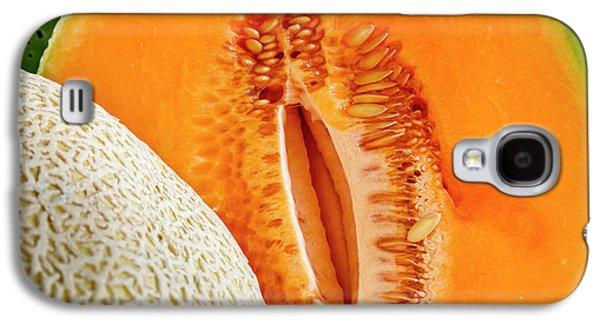 Fresh Cantaloupe Melon Galaxy S4 Case by Teri Virbickis