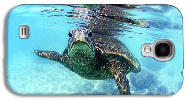 friendly Hawaiian sea turtle  Galaxy S4 Case