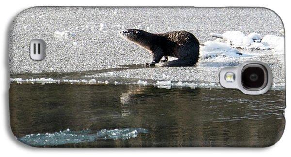 Frosty River Otter  Galaxy S4 Case