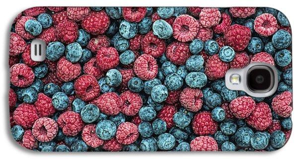 Frozen Berries Galaxy S4 Case by Tim Gainey