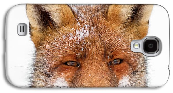 Frozen Fox Galaxy S4 Case