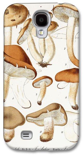 Fungi Galaxy S4 Case by Jean-Baptiste Barla