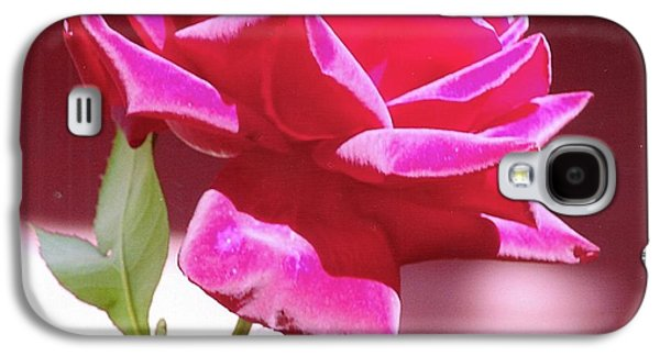 Fuschia Rose Galaxy S4 Case by Rod Ismay