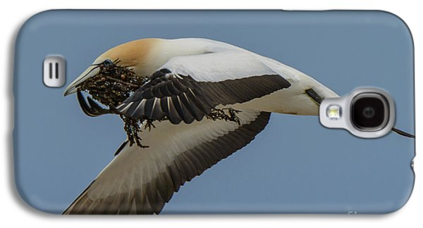 Galaxy S4 Case featuring the photograph Gannets 1 by Werner Padarin