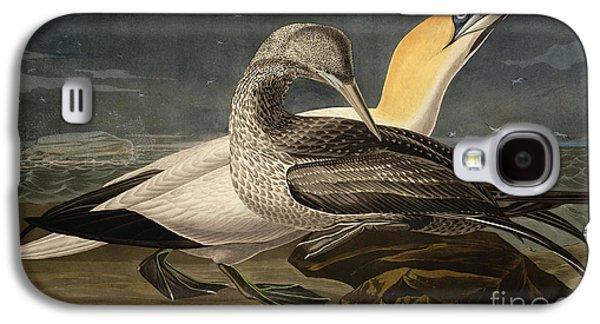 Gannets Galaxy S4 Case by John James Audubon