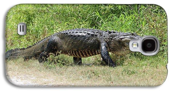 Gator Crossing Galaxy S4 Case