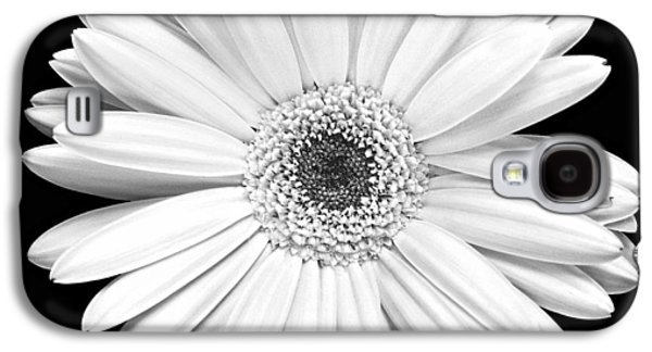 Single Gerbera Daisy Galaxy S4 Case