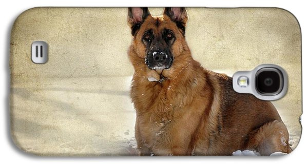 Canine Greeting Cards Digital Galaxy S4 Cases - German Shepherd Dog In Winter - Textured Galaxy S4 Case by Angie Tirado