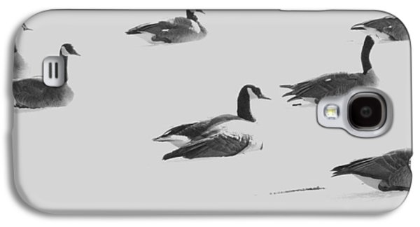 Ghost Geese Over Beverly Hills Galaxy S4 Case by Todd Sherlock
