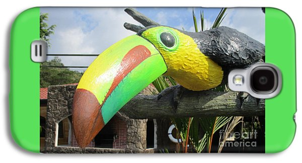 Giant Toucan Galaxy S4 Case by Randall Weidner