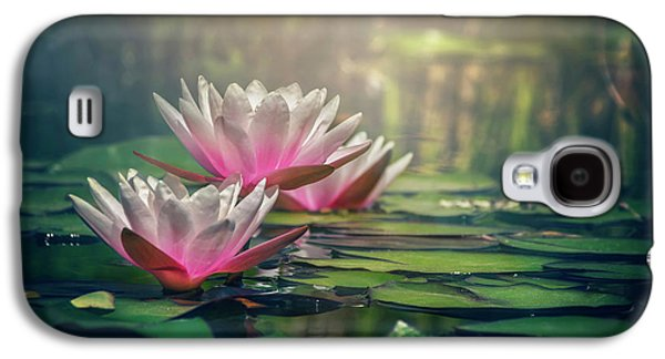 Gilding The Lily Galaxy S4 Case by Carol Japp