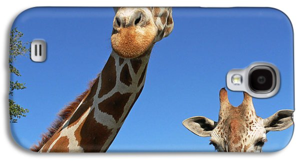 Giraffes Galaxy S4 Case