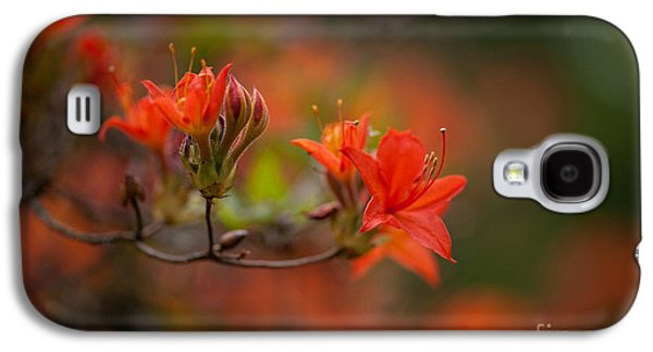 Glorious Blooms Galaxy S4 Case by Mike Reid