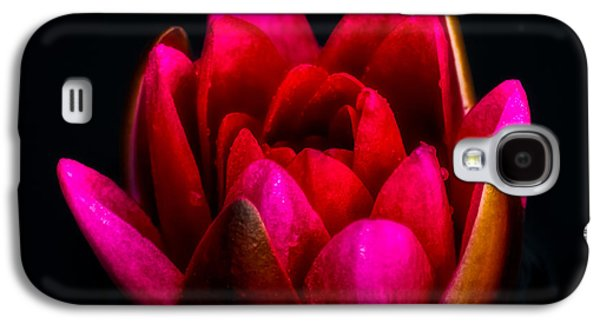Lily Galaxy S4 Case - Glorious Lily by Adrian Evans