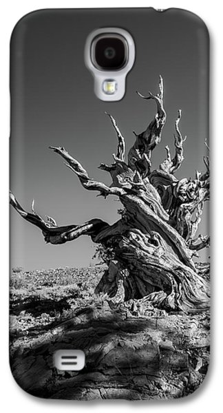Gnome Tree Galaxy S4 Case