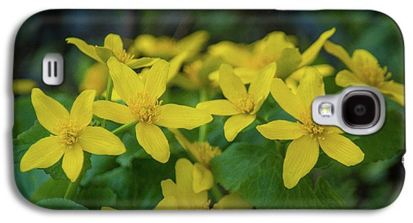 Galaxy S4 Case featuring the photograph Gold In The Marsh by Bill Pevlor