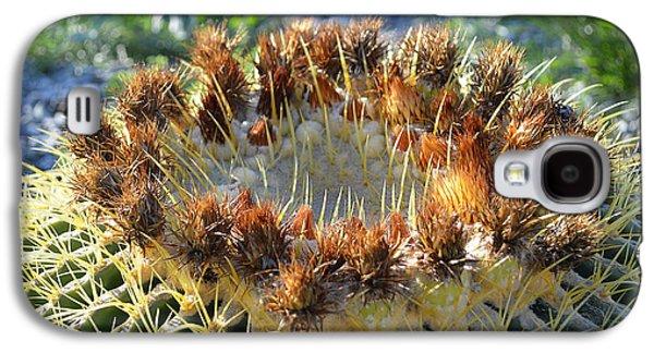 Golden Barrel Cactus Galaxy S4 Case