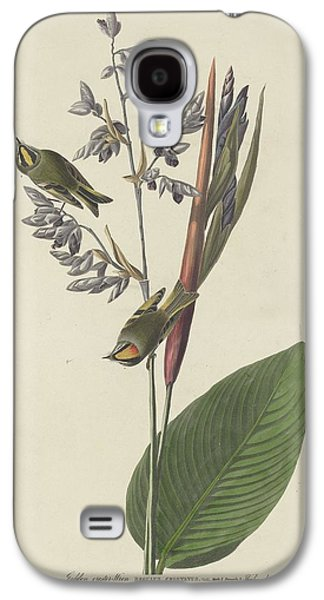 Golden-crested Wren Galaxy S4 Case by Rob Dreyer