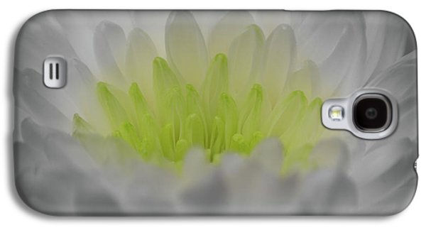 Golden Glow Galaxy S4 Case