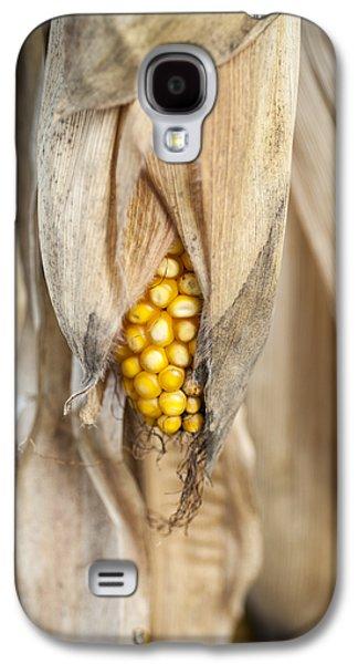Golden Harvest Galaxy S4 Case