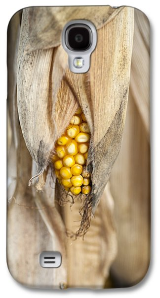 Golden Harvest Galaxy S4 Case