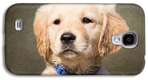 Golden Labrador Puppy Galaxy S4 Case by Nichola Denny
