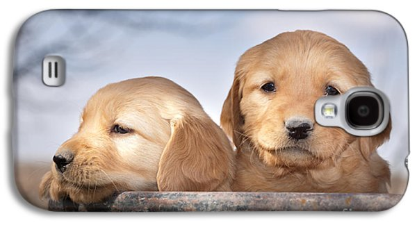 Golden Puppies Galaxy S4 Case by Cindy Singleton