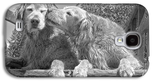 Golden Retrievers The Kiss Black And White Galaxy S4 Case by Jennie Marie Schell