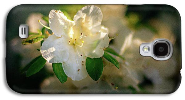 Galaxy S4 Case - Golden White Azaleas by Tamyra Ayles