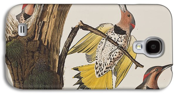 Golden-winged Woodpecker Galaxy S4 Case by John James Audubon