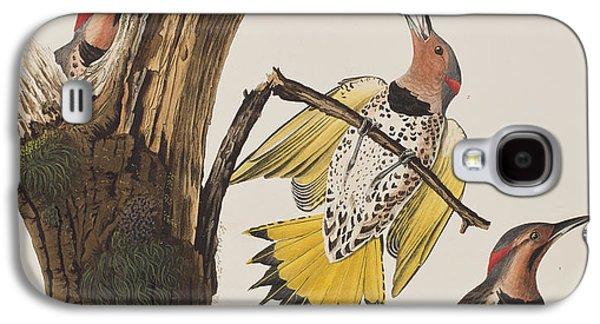 Golden-winged Woodpecker Galaxy S4 Case