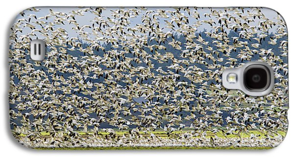 Goose Storm Galaxy S4 Case by Mike Dawson