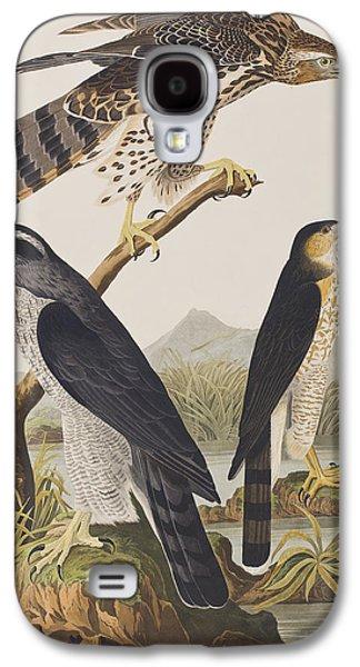 Goshawk And Stanley Hawk Galaxy S4 Case by John James Audubon