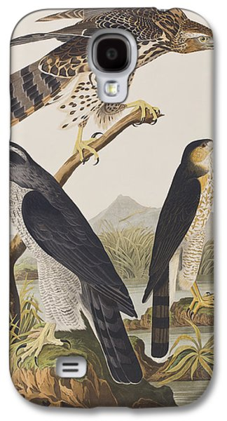 Goshawk And Stanley Hawk Galaxy S4 Case by John James Audubon