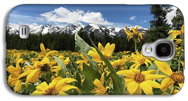 Grand Teton Mountains Galaxy S4 Case