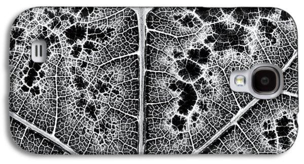 Grape Leaf Monochrome Galaxy S4 Case by Tim Gainey