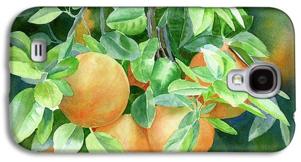 Grapefruit With Background Galaxy S4 Case