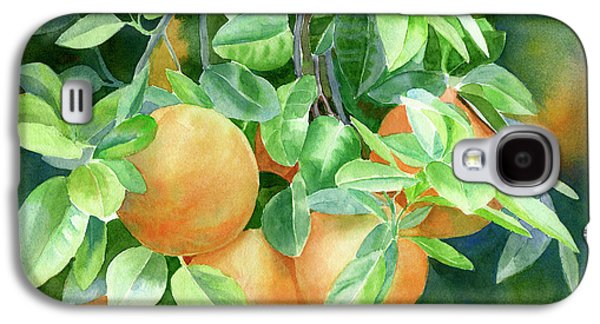 Grapefruit With Background Galaxy S4 Case by Sharon Freeman