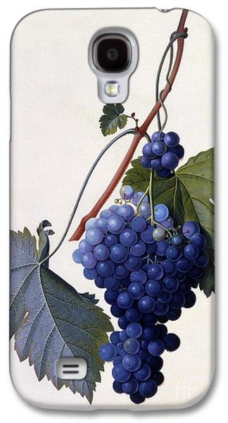 Grapes Galaxy S4 Case by Georg Dionysius Ehret