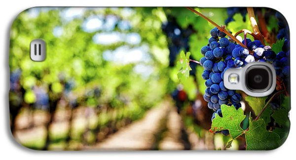 Grapes On The Vine Galaxy S4 Case by Jill Wellington