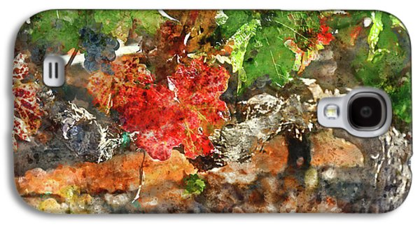 Grapevine In The Autumn Season Galaxy S4 Case by Brandon Bourdages