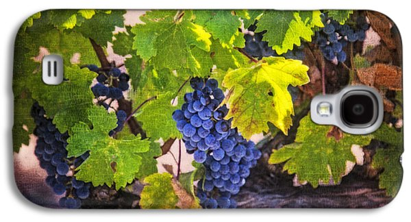 Grapevine With Texture Galaxy S4 Case by Garry Gay