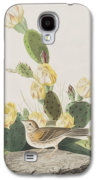 Grass Finch Or Bay Winged Bunting Galaxy S4 Case
